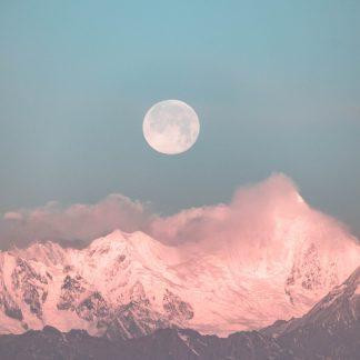Full Moon - Womb Wisdom